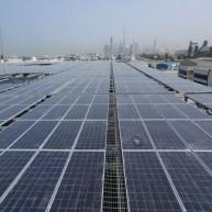 Dubai's Renewable Energy Initiative Gains Momentum